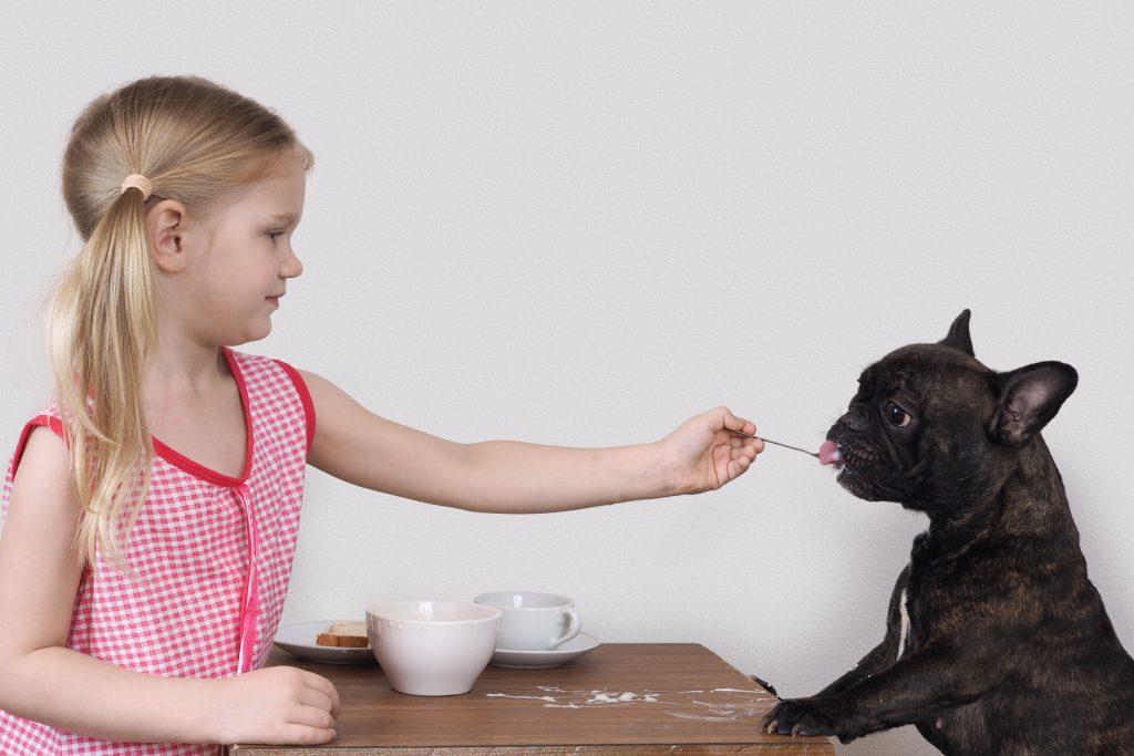 Bouledogue français avec enfant