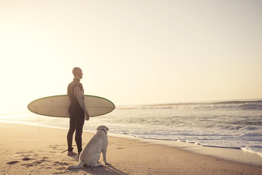 Vacances avec mon chien à la plage