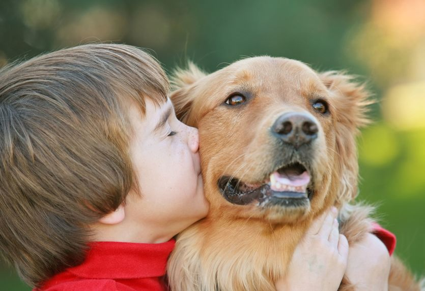 Enfant calin avec Labrador