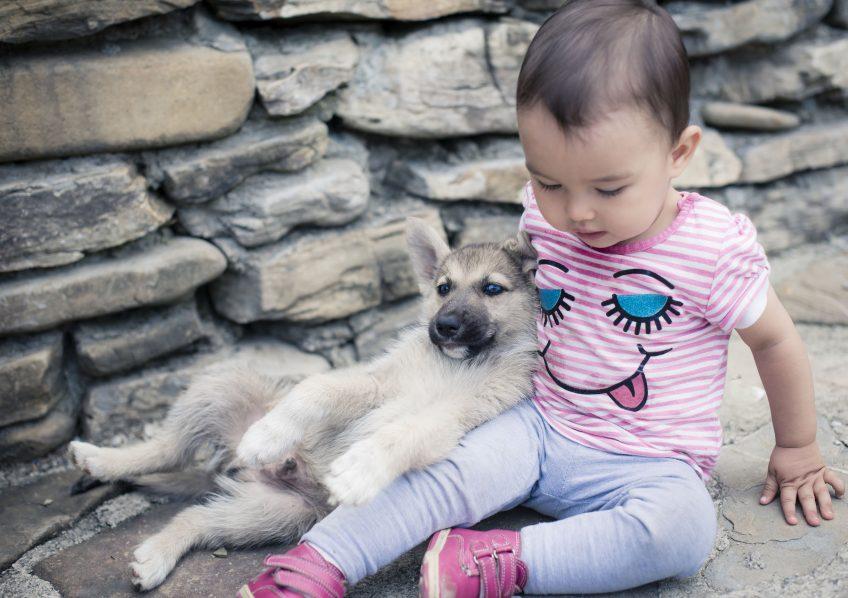 Chiot avec enfant