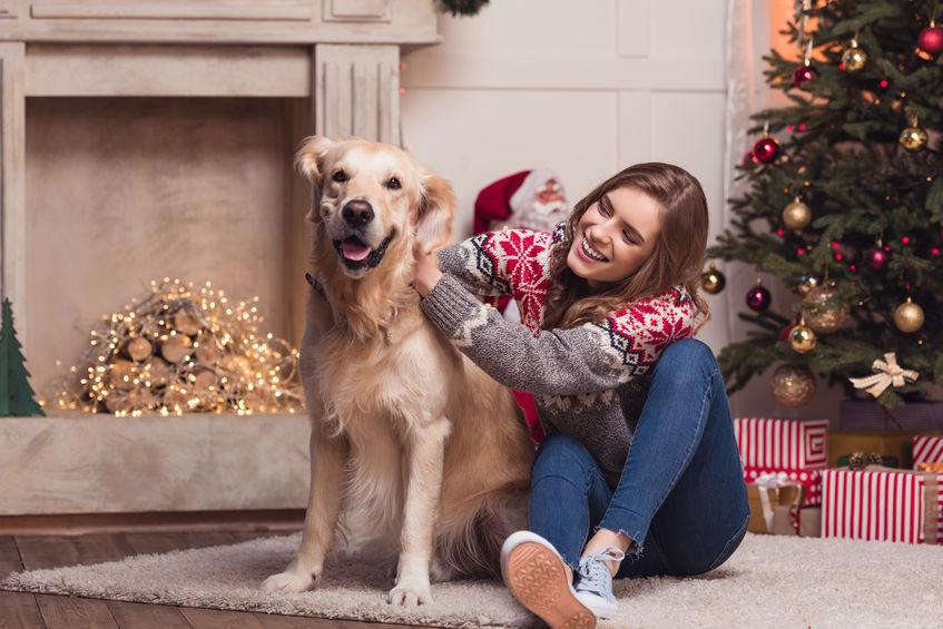 Labrador et jeune femme à noël