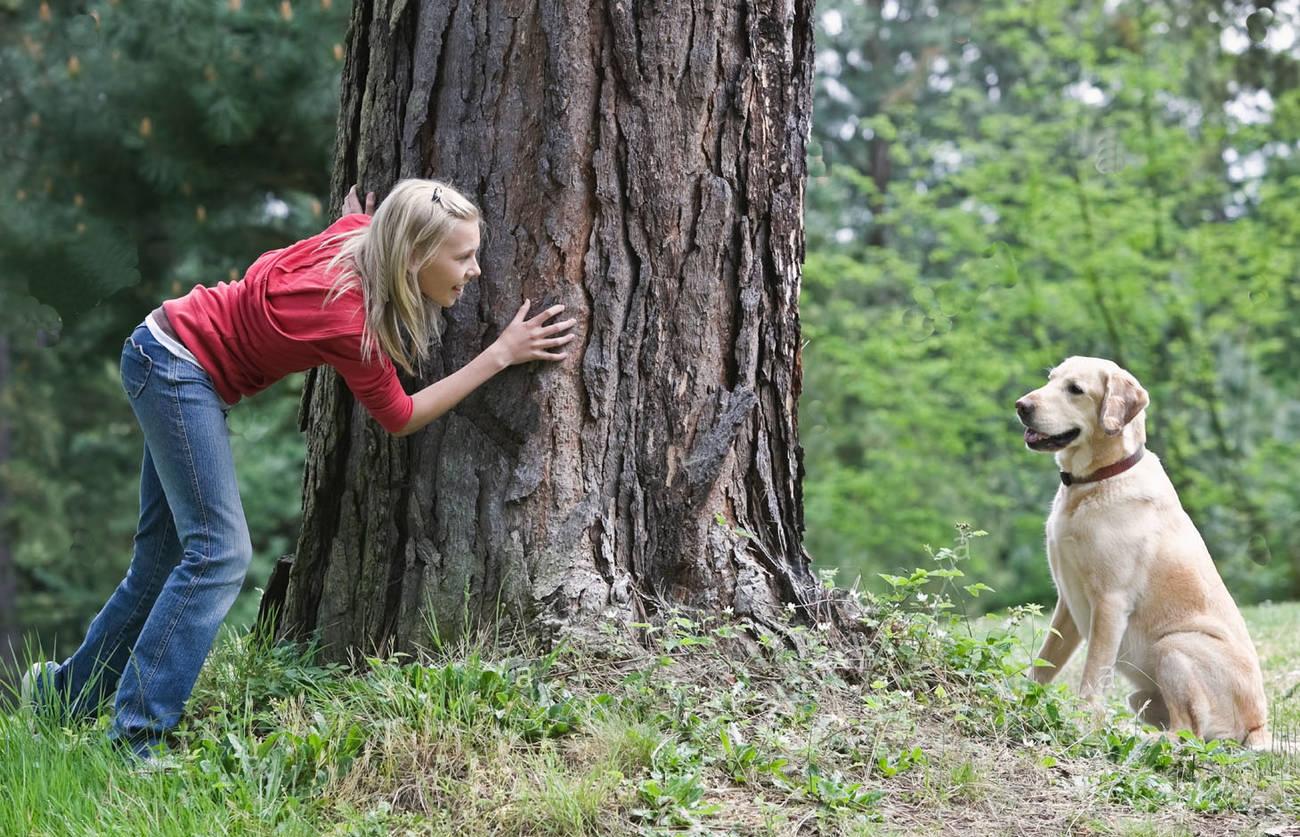 Jouer à cache cache avec son chien