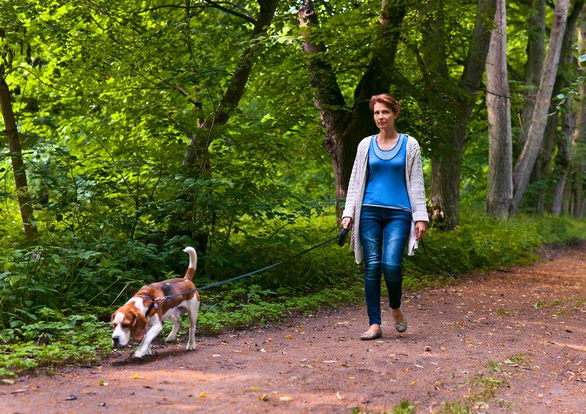 Promenade de chien lors du confinement