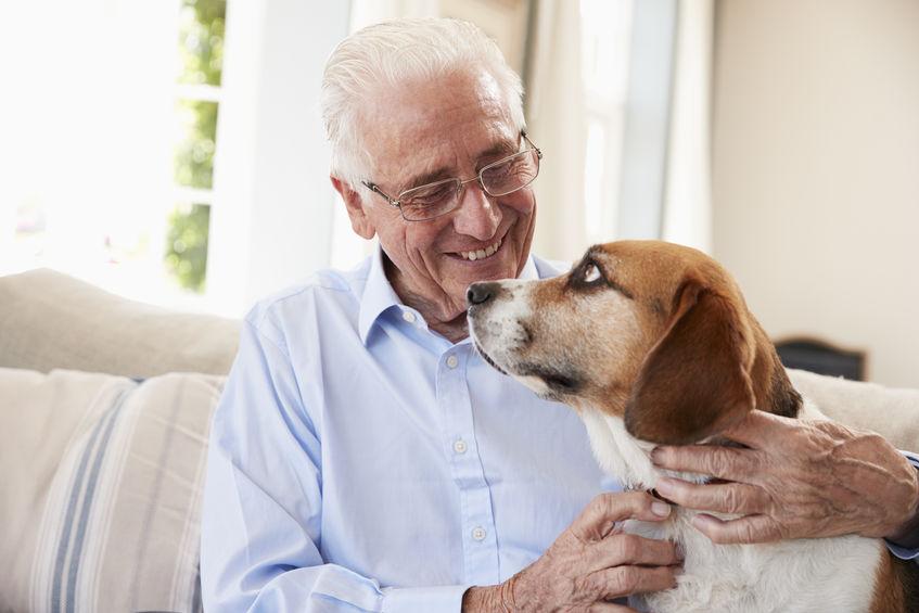 Personne âgées avec son chien