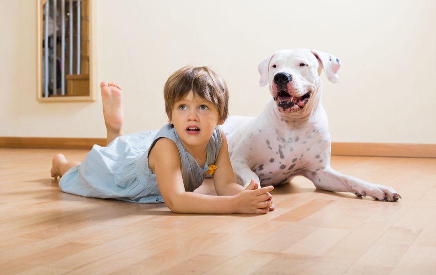 Dogue Wouf Wouf avec enfant