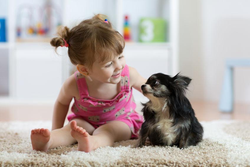 socialiser son chiot avec les enfants