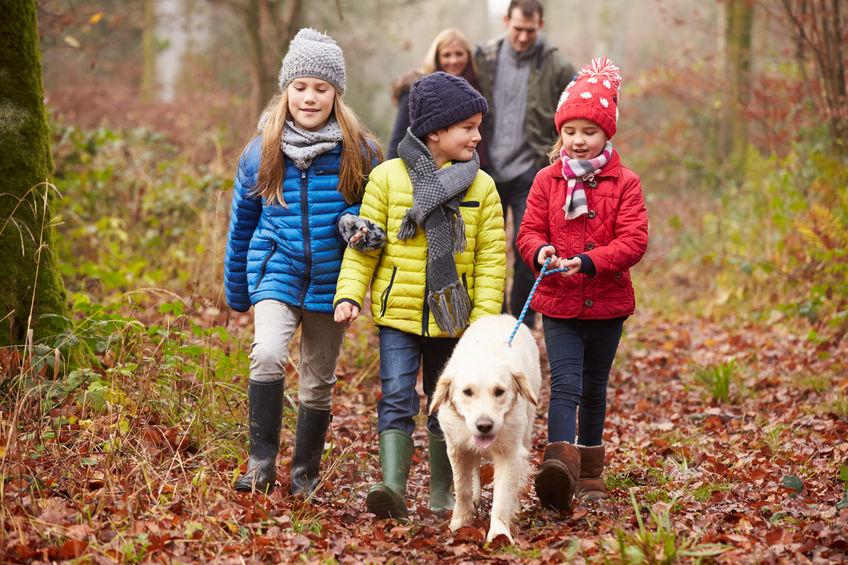 famille avec son chien dans la forêt