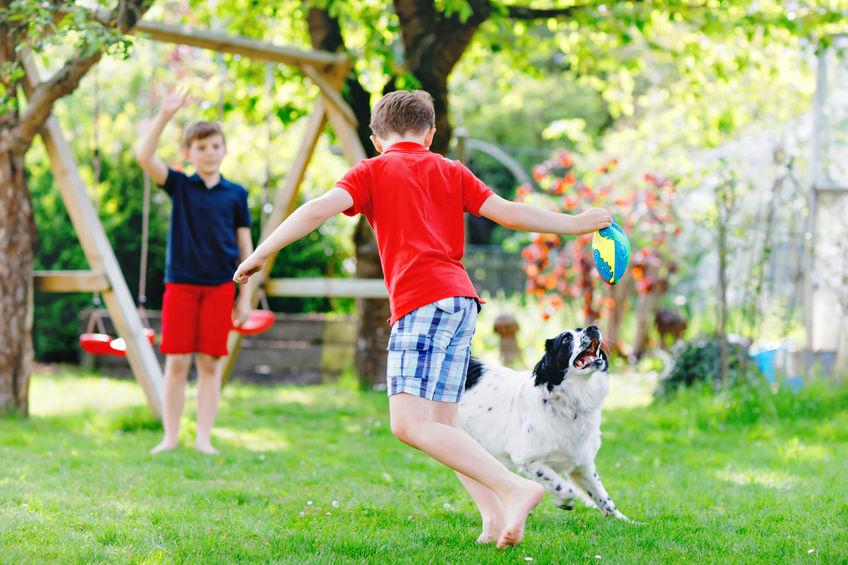 chien joue avec des enfants