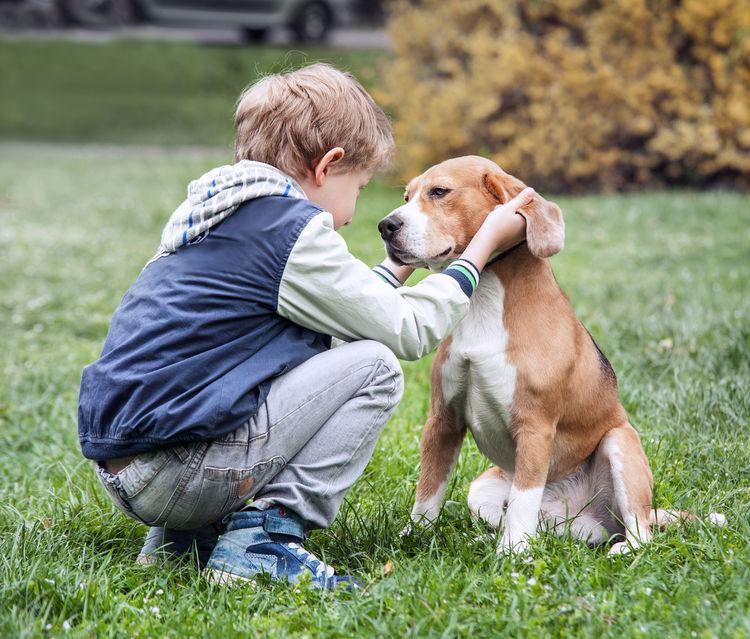 Meilleurs amis du monde